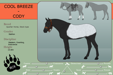 Ref sheet - Cool breeze by MammothEquine71