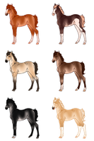 Pangare Foals - Sold by Miss-Adopts