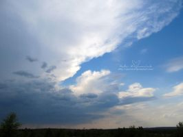 Before the Storm by NelEilis