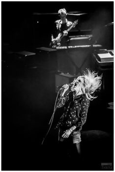The Kills by Uchoose