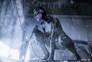 CATWOMAN-BATMAN RETURNS-COSPLAY by andycold