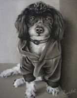 Sweater Weather - Charcoal Commission by secrets-of-the-pen