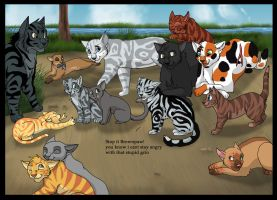 a day in riverclan by brownwhisker