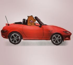Bear on mx5 by elcoruco1984