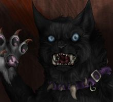Scourge on the name of cats by KatCoredA