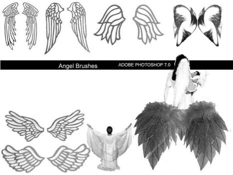 Angel Wing Brush Set for 7.0 by newdoll-stock