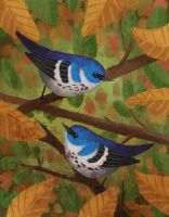Cerulean Warblers - Losing Altitude Submission by BriMercedes