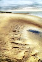 Tracks of life... by ChristineAmat
