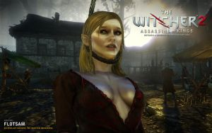 Witcher 2. Flotsam's Happy Life by JakeCarver