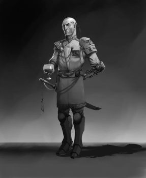 Imperial  Guard Officer by renauart