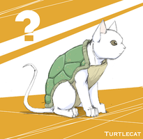 turtlecat by cheetahtrout