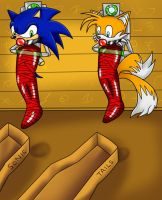 Sonic and Tails mummified alt1 by KurtType5