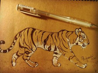 Tiger by firsthuntress