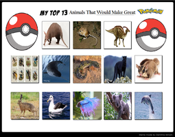 Animals I Think Would Be Great Pokemon by KessieLou