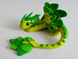 Dragon choux by krisclay74