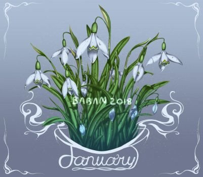 January Snowdrops by BabaKinkin