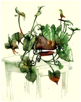 hold.still.life.PRINT by betteo