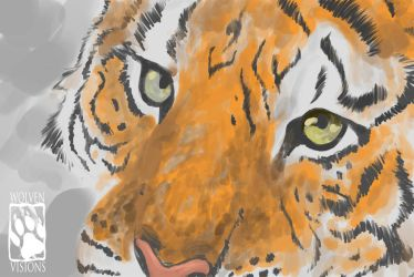 /. Tiger WIP /. by WolvenVisions