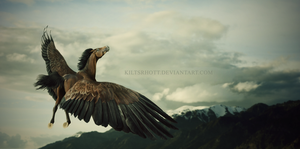 Afar Upon the Wind by kiltsrhott