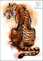 Watercolor tiger by Cristalwolf