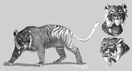 Tiger Concept by Whiksers
