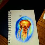 Sunset jellyfish by xprotector10