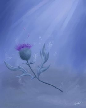 Drowning Thistle by spiritwolf77