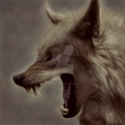 Lycan_Concept by CathleenMarie