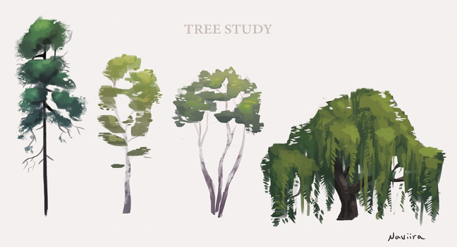Tree Study by Naviira