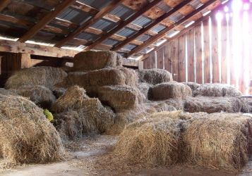 Barn Loft 2 by da-joint-stock
