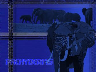 pachyderms by mr-whyte