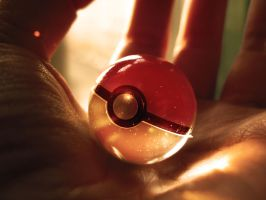 Pokeball by wazzy88