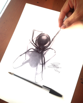 3D Spider drawn with ballpoint pen by Godofpen