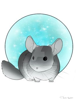 Chinchilla art by Tipsutora