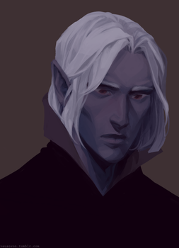 drow disguise by veusovon