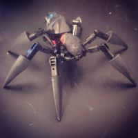 Kraata Widow Spider by Monarth