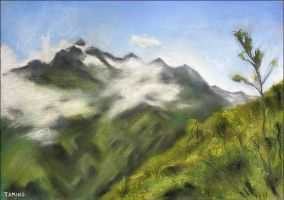 Misty Mountains by tamino