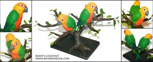 Jenday Conures by emilySculpts