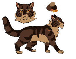 Brambleclaw design by paintedpaw-cat