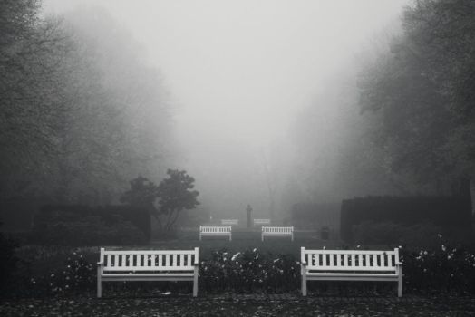 In the mist by requiem-at-saturday