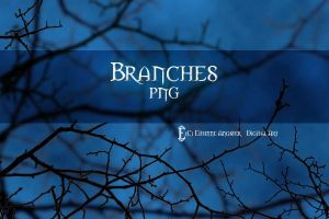 Branches STOCK by Eithnne