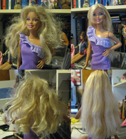 Barbie Hair Don't to Hair Do 2 by Anomalies13