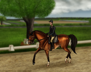 Summer Dressage Show - Harry by ElreniaGreenleaf