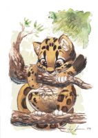 Clouded Leopard by Kamirah