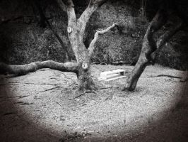 Ghost Tree by ThatsByronic