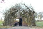 Stock - Gothic dark fantasy woman tunnel of trees by S-T-A-R-gazer