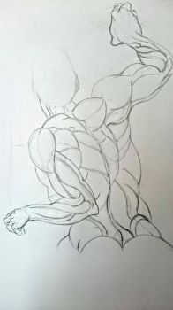 Another anatomy sketch  by hugofb87