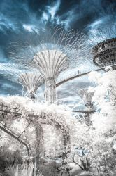 Gardens in IR 1 by DrakeXaos