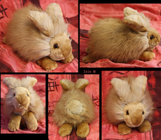 Angora rabbit-plushie, PATTERNS, TUTORIAL by IsisMasshiro