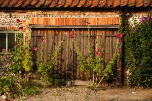Rustic Norfolk by parallel-pam